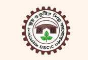 BSCIC to hold fair in large scale to promote SMEs' products