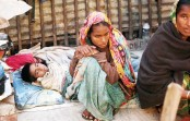 6,197 people affected by cold-related disease in 24 hrs