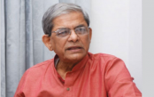 Nation facing worst time because of internal enemies: Fakhrul