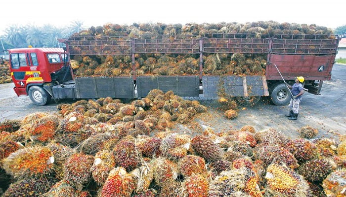 Bangladesh keen to raising palm oil imports from Malaysia
