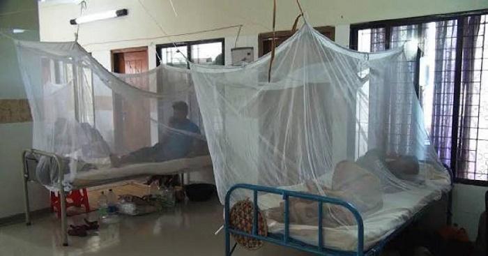 3 new dengue patient detected in last 24 hrs: DGHS