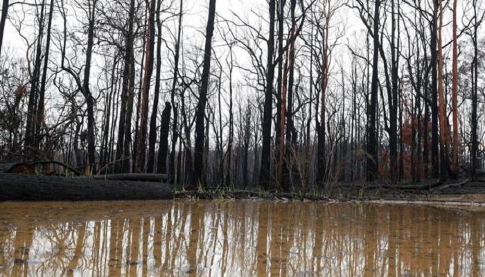 Australia fires: Victoria braces for severe storms