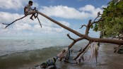 People urgently fleeing climate crisis cannot be sent home: UN