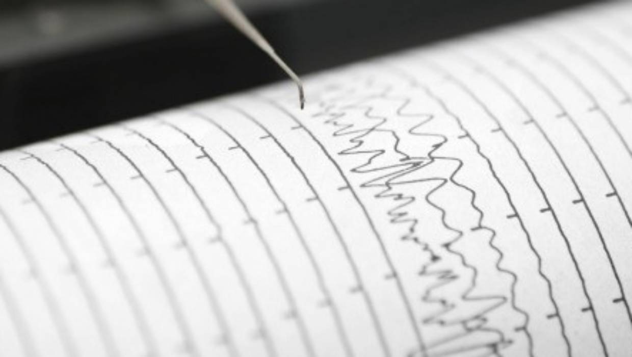 Small early-morning earthquake felt in New Zealand