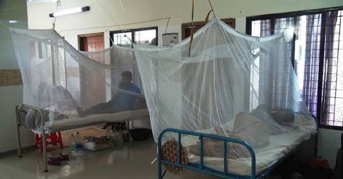 2 new dengue patients hospitalised in 24hr