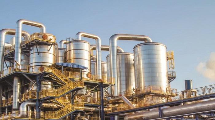 Thai Exim Bank, JBIC keen to invest in sugar mills of Bangladesh