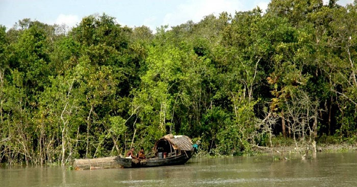 Government plans to revamp facilities in Sundarbans to boost tourism