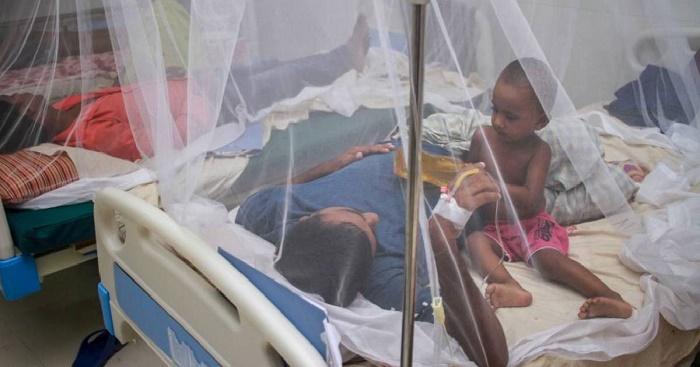 6 new dengue patients detected in last 24 hrs: DGHS