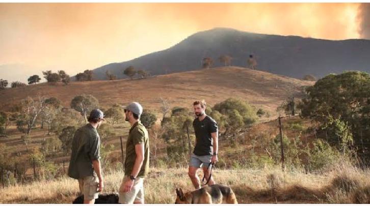 Wildfire creates state of emergency in Australian capital