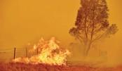Canberra residents seek shelter as bushfires rage