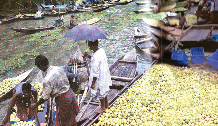 Floating Guava Markets of Jhalokati, Pirojpur Attract Tourists