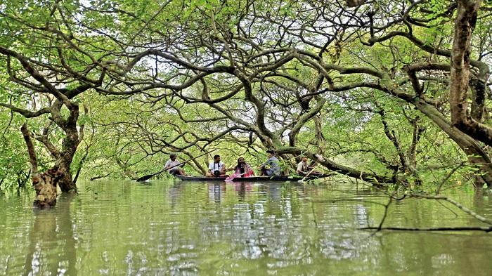 Coronavirus to affect Bangladesh's tourism, aviation sectors