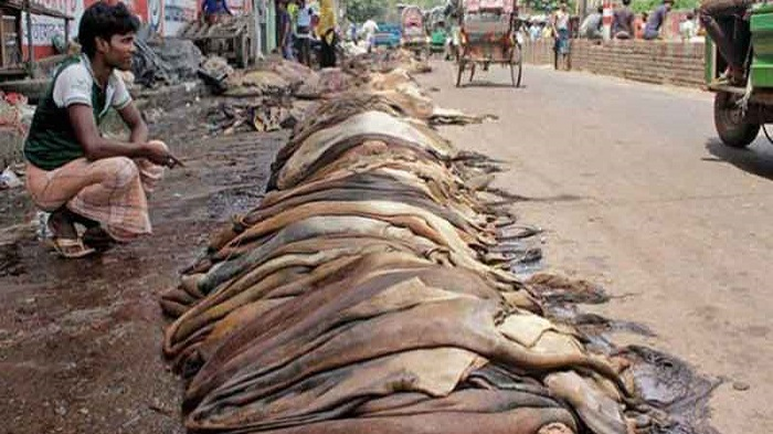 Body to be formed for rawhide management during Eid-ul-Azha