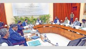 Ecnec okays India-Bangladesh pipeline project