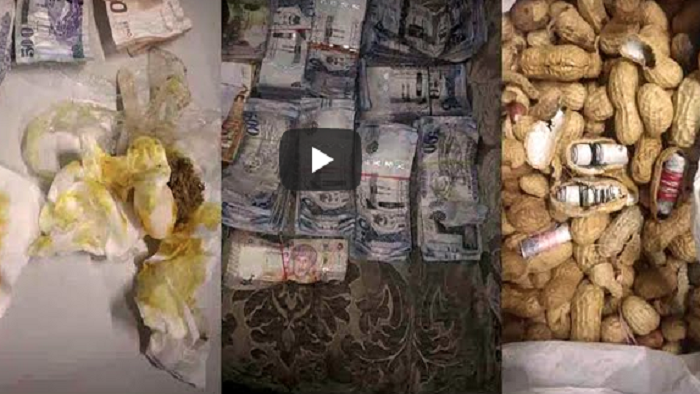 Mumbai Customs seized Currency worth 45 lakh from peanuts (watch)