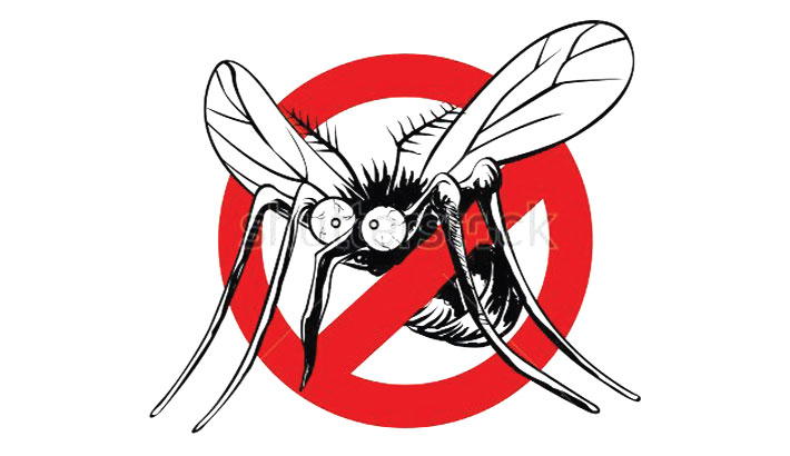 Dengue fear returns