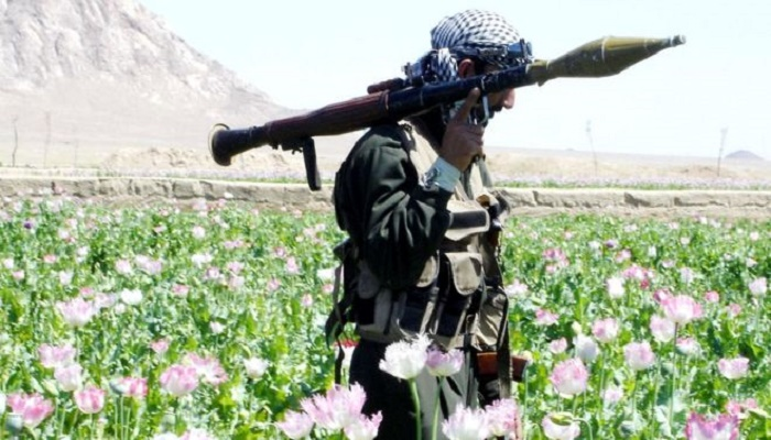 Afghanistan war: US and Afghan Taliban start partial truce