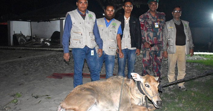 Slaughtered deer, deer hides recovered in Khulna