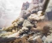 Bushfire smoke killed endangered Aussie mice far from blazes