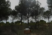 Water theft a growing concern in increasingly-dry Spain