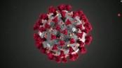 Bangladeshi woman dies of Cronavirus in New York