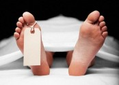 Mother stabbed dead by 'drug addict' son in city