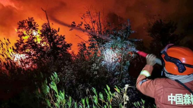 Chinese forest fire: Firefighters and guide killed in Sichuan blaze