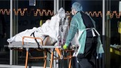 COVID-19: Death toll in Netherlands surpasses 1,600