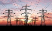 Coronavirus: Power in India utilities gear up for blackout Sunday