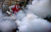 As coronavirus diverts minds, dengue menace lurks