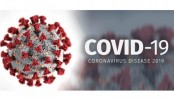 Coronavirus: Mirpur, Bashabo mostly affected areas in city