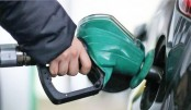 Oil price drop by more than 60pc in Q1: OPEC