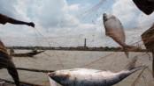 200 fishermen get foodstuff in Khulna