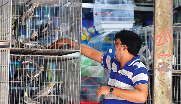 Pet shops across the city remain open to feed the pets every day