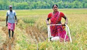 Janata Bank introduces agri-machinery loan