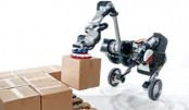 Robotic delivery system