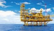 Govt has no plan  to invite offshore  bidding soon