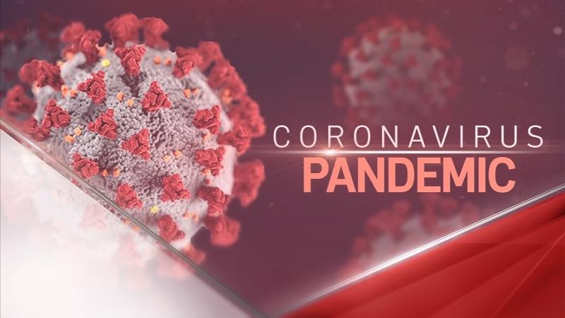 Antibody effective at blocking Coronavirus from human cells: Sorrento Therapeutics