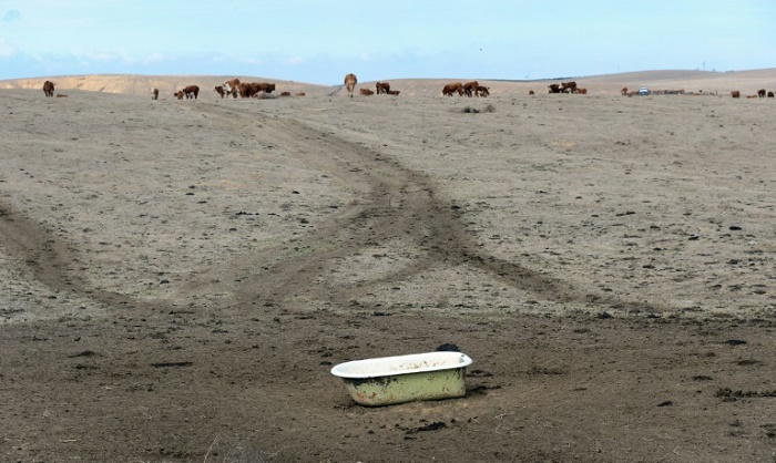 Climate change makes repeat 'Dust Bowl' twice as likely