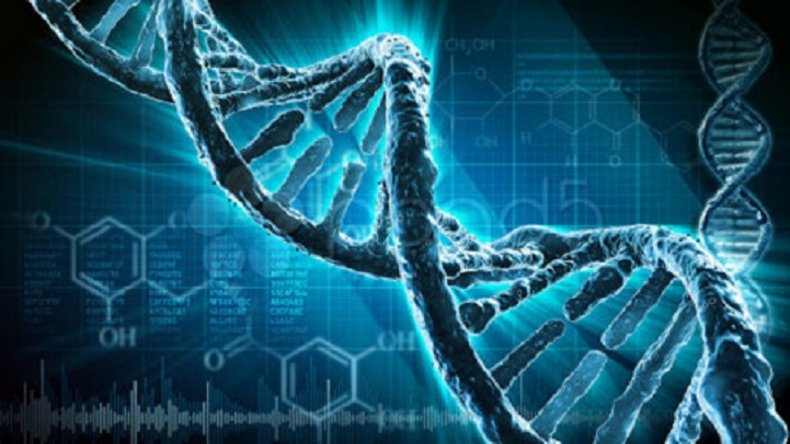 Dhaka University decode genome sequence of five Covid-19 samples