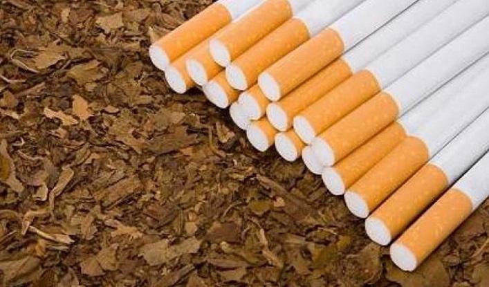 Tobacco kills 126,000, causes Tk 300b loss a year in Bangladesh