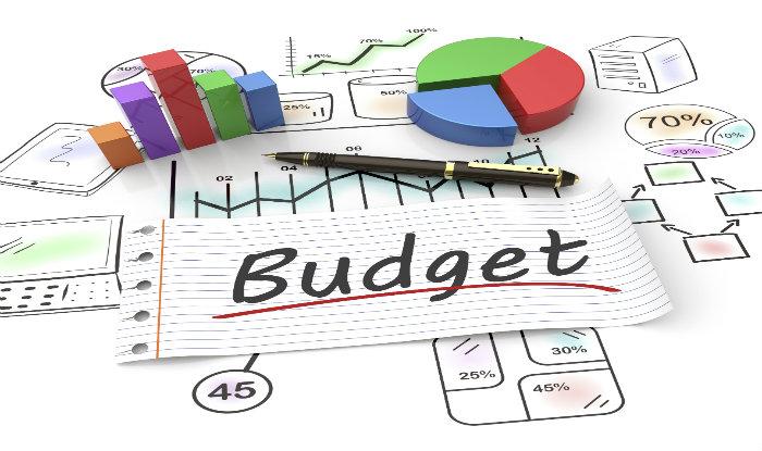 Budget should strengthen health, social security sectors: Economists