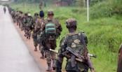 16 dead in new massacre in eastern DR Congo