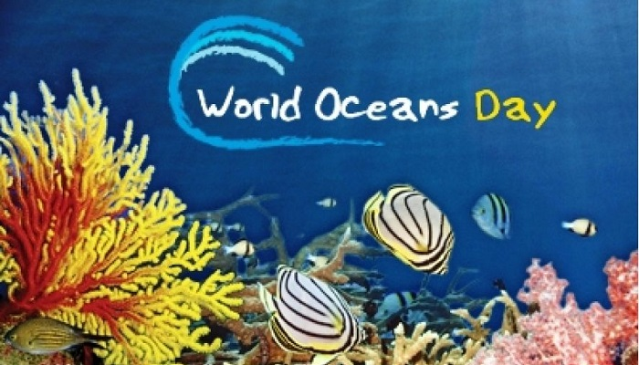 Why we need to save ocean?