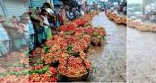 Bumper litchi yield brings smiles to Brahmanbaria farmers amid virus worry