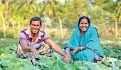 Palli Sanchay Bank 'grain stock loan' brings smile to farmers