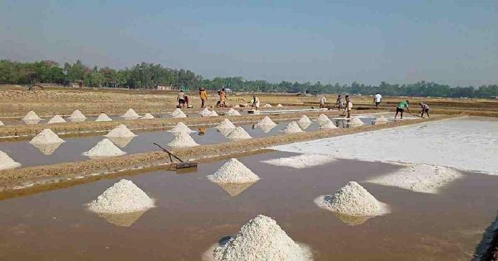 Enough salt in stock to meet 10 months' demand: BSCIC