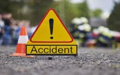 Seven dead, one injured in north China road accident