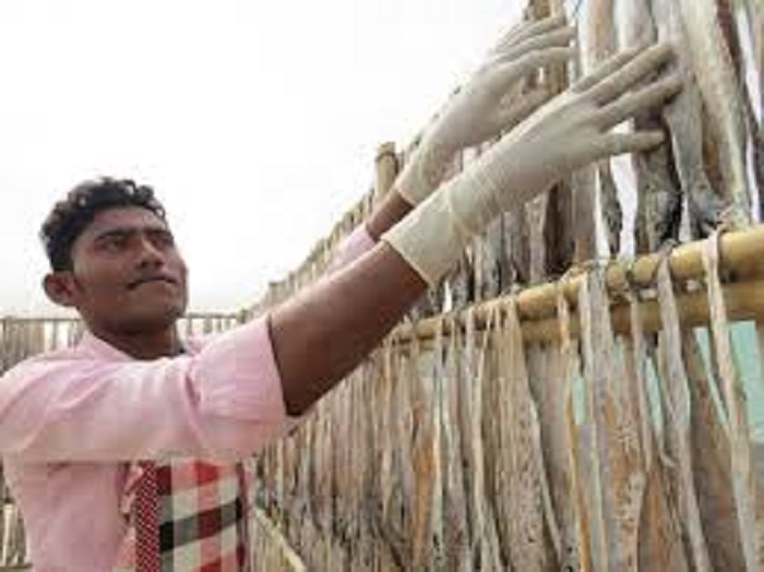 Monsoon brings dire days for dry fish labourers amid COVID-19