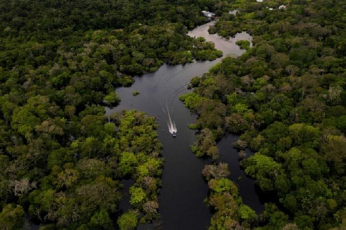 $4 trillion fund holders tell Brazil to halt deforestation